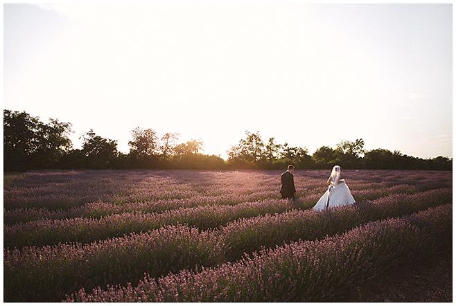 Brautpaarfotos in Lavendelfeld, Provence © Hochzeitsfotograf Berlin hochzeitslicht