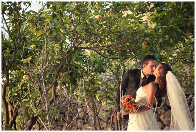 Hochzeitsfoto von Fotografin in Orangenhain auf Mallorca © Hochzeitsfotograf Berlin hochzeitslicht