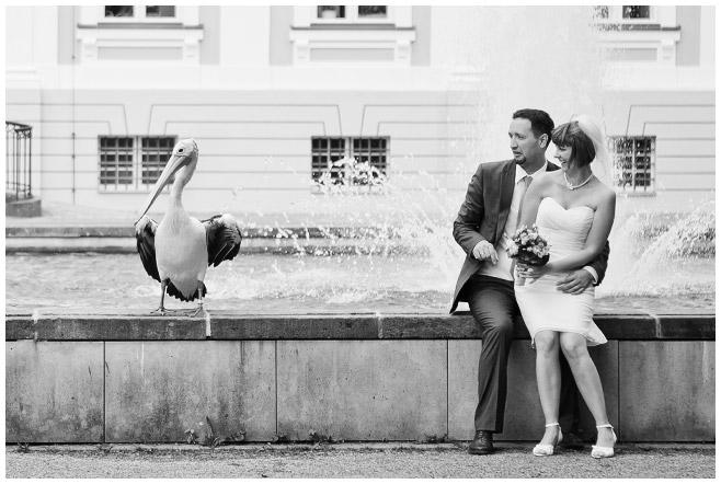 Foto Brautpaar von professioneller Hochzeitsfotografin im Tierpark Friedrichsfelde © Hochzeitsfotograf Berlin hochzeitslicht